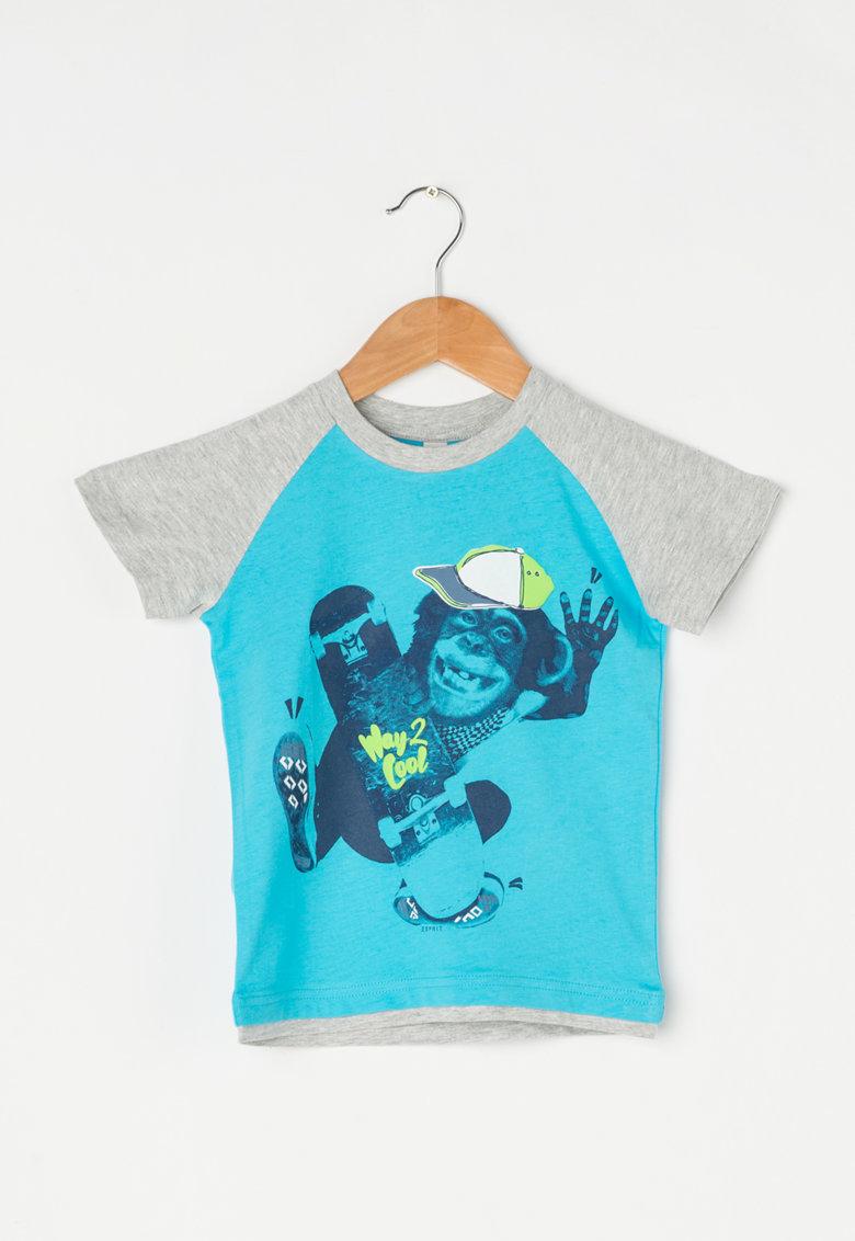 Tricou albastru aquamarin si gri cu imprimeu de la Esprit